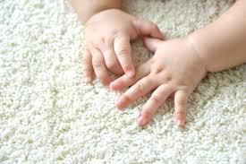 How To Find The Best Carpet Cleaning Companies in Killeen TX