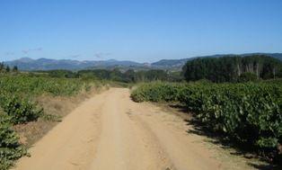 Étape 56 : Ponferrada (Cast.) à Trabadelo (Cast.) – 33 km (1571 km)