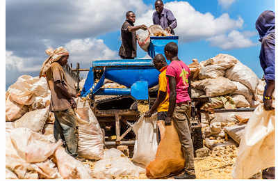 Une action judiciaire ne parvient pas à stopper les importations de denrées alimentaires du Kenya