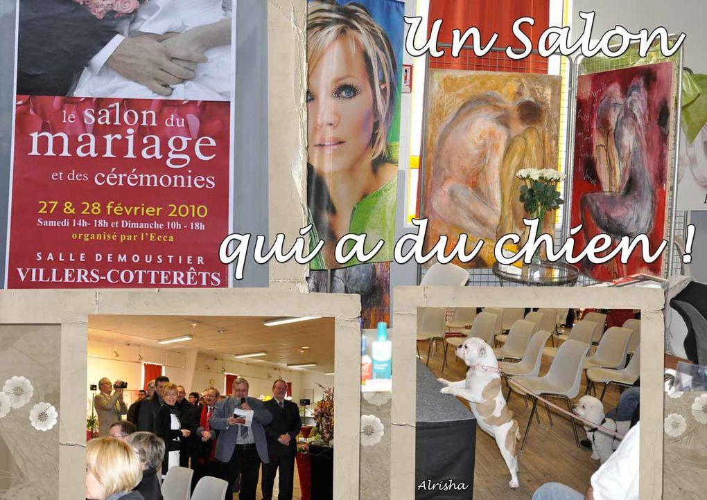 A Villers-Cotterêts, les 27 et 28 février 2010 Défilés de annequins accompagnés de leurs chiens toilettés et habillés par Carole Boudot Exposants d'évènements festifs