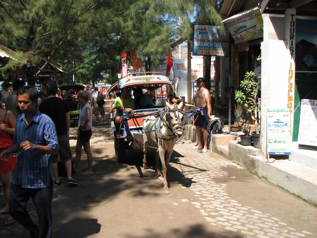 Album - indonesie-2(Sumbawa/Bali)