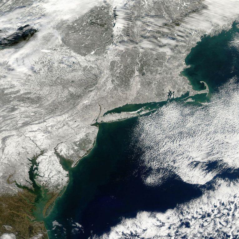 Images de la vague de froid aux Etats-Unis. Glace et neige à Chicago et NewYork