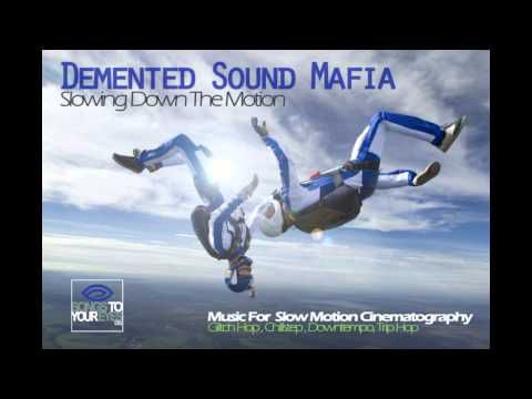Demented Sound Mafia - Soul Surfer