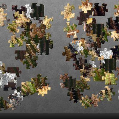 Puzzle du jour