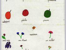 Fruits et fleurs de l'été, dans un vieux cahier d'écolier