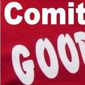 L'activité des COMITÉS de soutien aux GOODYEAR : comptes rendus des réunions et dates des prochaines assemblées
