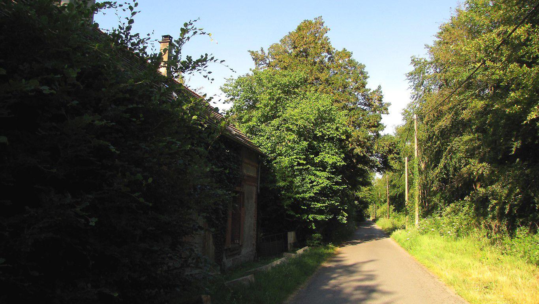 le Chemin du Vivier du Grès et la Route de la Fontaine à Baril