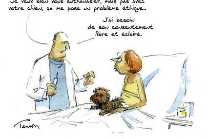 L''euthanasie, regarder la mort en face ?