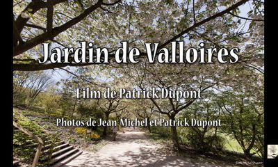 Balade dans les jardins de l'abbaye de Valloires (80)