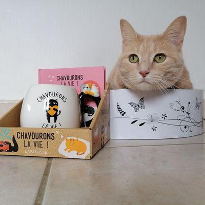 Sélection de coffrets Larousse pour un fan de chat !