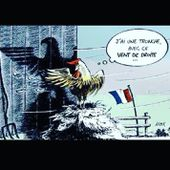 Humour Elections Régionales: Le nouveau coq aiglé ?