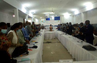 Congo/Tourisme et Loisirs: Vers la formulation d'une feuille de route intégrant les défis et les stratégies de pilotage du secteur des Loisirs.