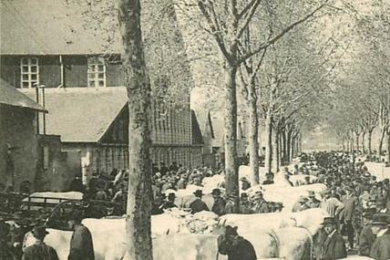 Moulins sur son 31 pour le festival musical du 8 juillet 1912