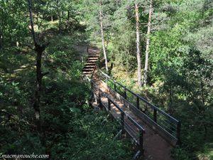 Le parcours est parfaitement aménagé de petits ponts ou de marches en bois aux endroits périlleux.