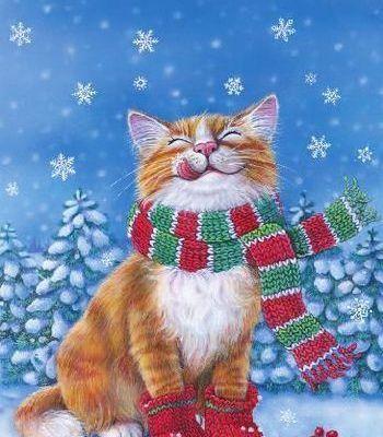 Chats Noël...