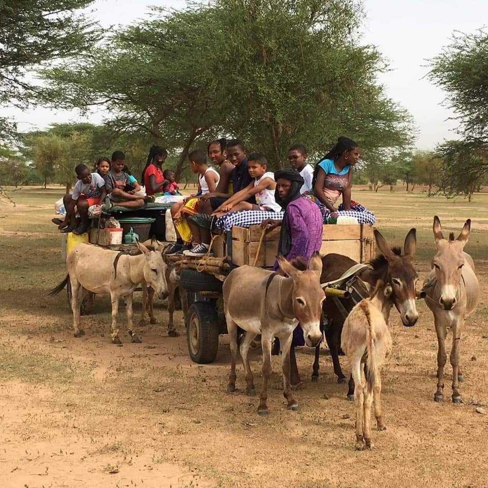 """""""Le Fouta-Toro et ses valeurs ancestrales en crise : Comment rebondir ?"""" par Amadou Bal BA baamadou.over-blog.fr"""