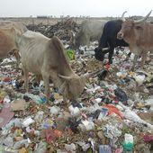 Kao-Plast, entreprise sociale de recyclage