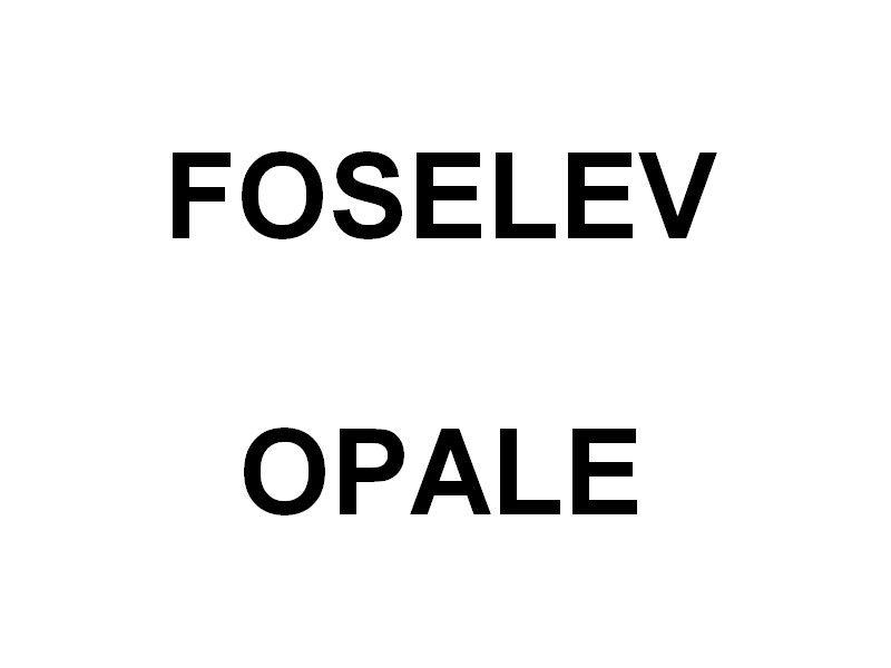 """FOSELEV OPALE  , en entretien aux chantiers  """" Foselev Marine"""" à la Seyne sur Mer le 20 janvier 2020"""