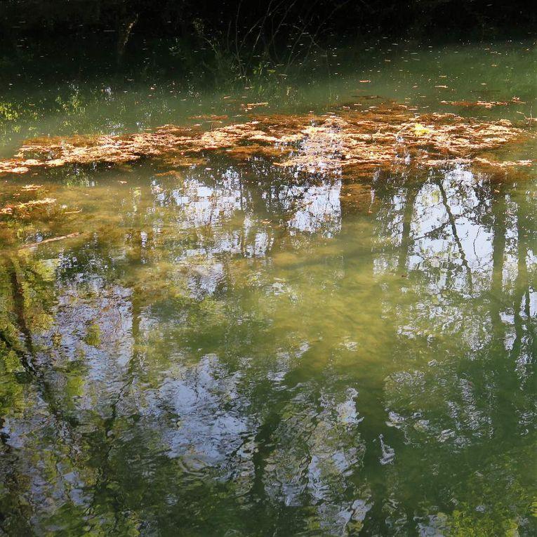 Entre Grabels et Montpellier (La Paillade) coule une rivière...c'est un secret