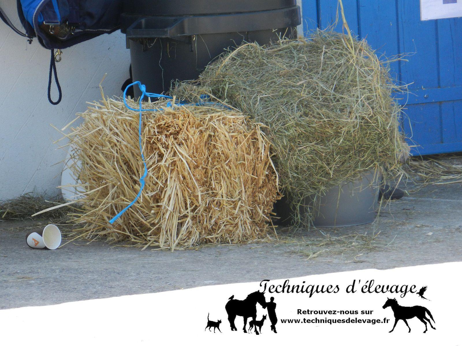 Foin et paille. Techniques d'élevage (R). Tous droits réservés