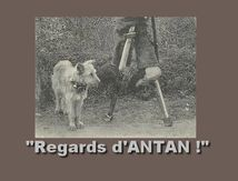 Album Regards-ANTAN (3)