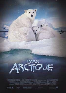 ARCTIQUE, une grande leçon de morale en IMAX [critique]