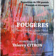 salon du pastel de Fougères