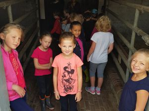 Stage Equitation Comines 5/6 ans et 7/8 ans 31/07/2017