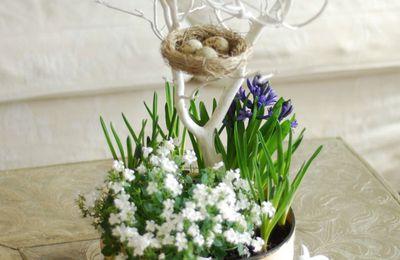 Présentation florale de Pâques