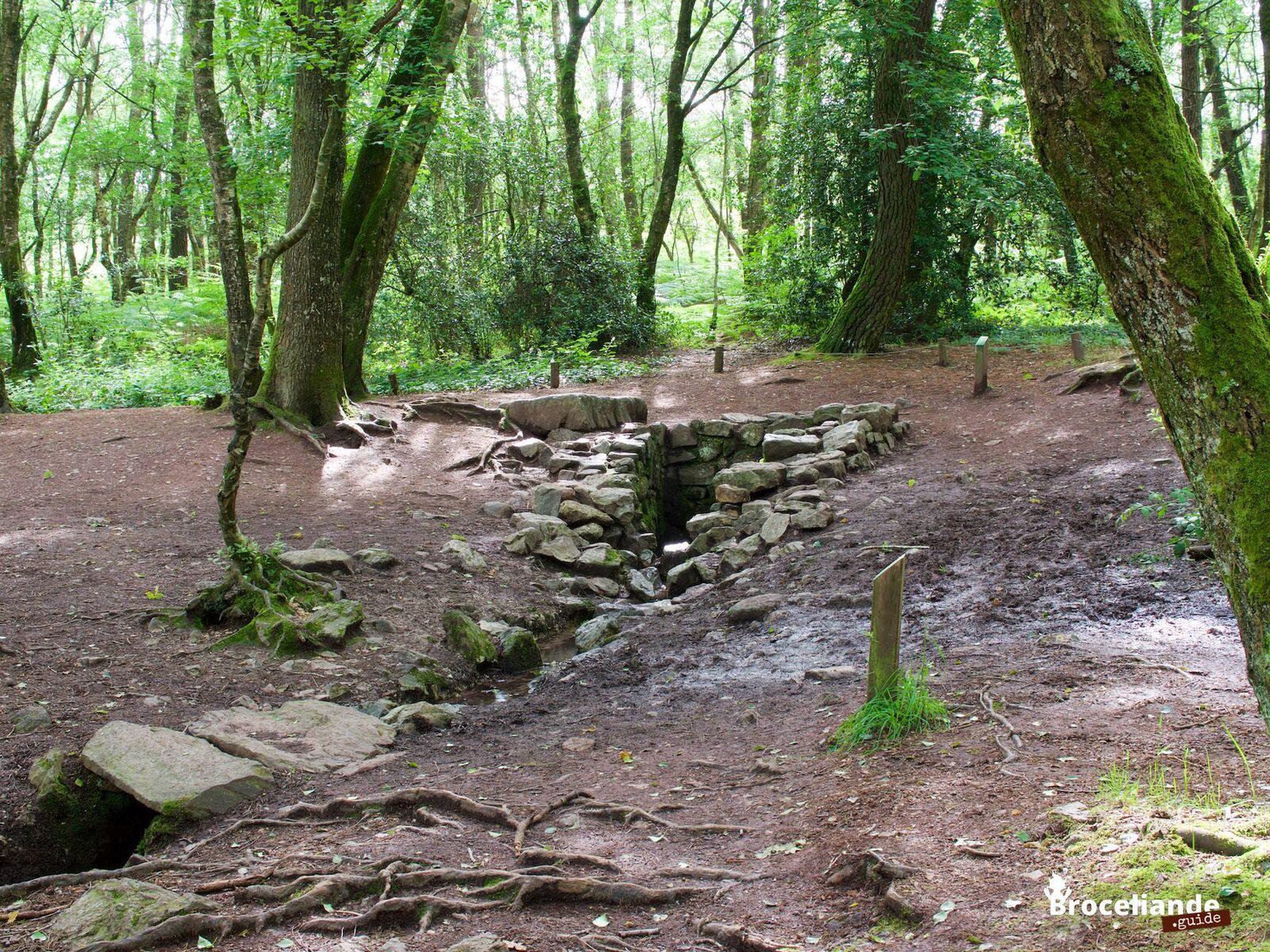 Une balade à Brocéliande : L'Abbaye et l'étang de Paimpont, La fontaine de Barenton, Le Tombeau de Merlin et le Chêne des Hindrés