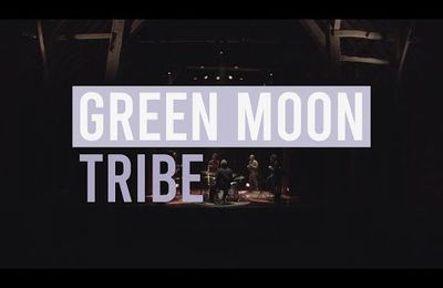 Thierry Crommen et Green Moon Tribe - Live