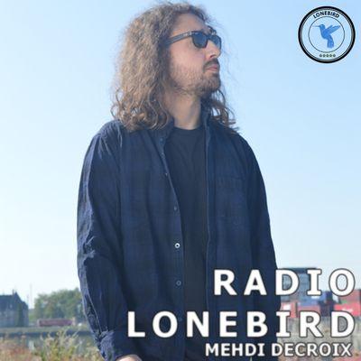 RADIO LONEBIRD # 1 - Les bandes originales de VLADIMIR COSMA [Podcast]