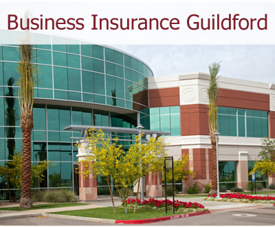 What To Expect From A Business Insurance Agent?