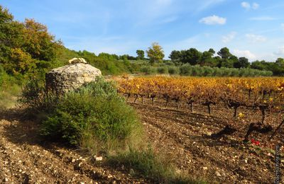 Derniers jours d'automne en Provence