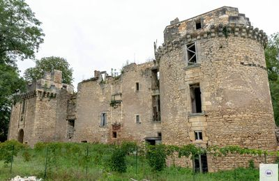 Un Château abandonné en Dordogne du 16ème siècle