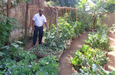 L'agriculture urbaine prospère en Afrique de l'Est pendant la Covid-19