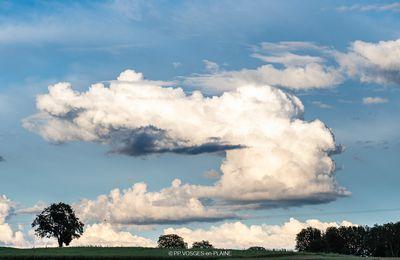 Cheveux aux vents dans le ciel de MADONNE-ET-LAMEREY