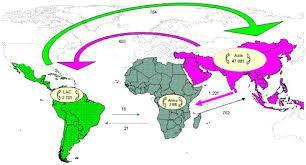 Maroc, terre de consolidation de la coopération Sud-Sud