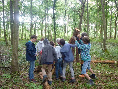 Notre oeuvre collective dans les bois (1)