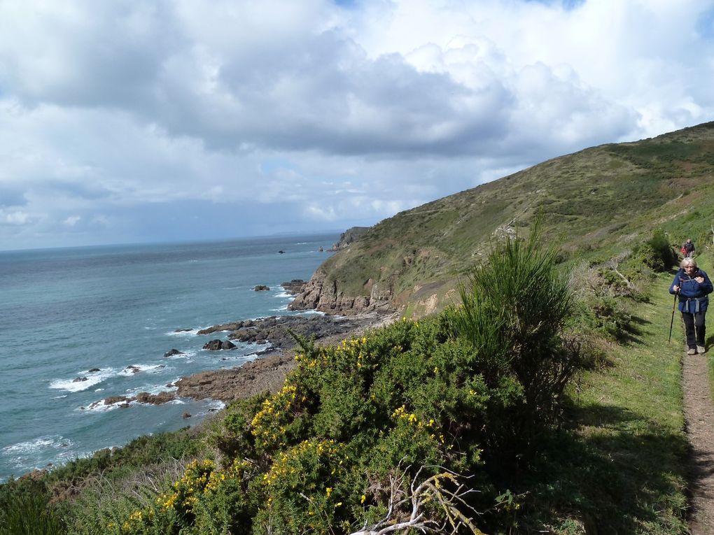 Randonnée Cotentin, d'Ecalgrain à Herquemoulin - 9 km.