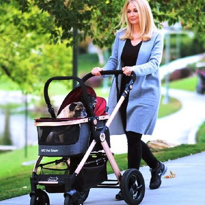Learn How to Buy the Right Pet Stroller for Your Dog