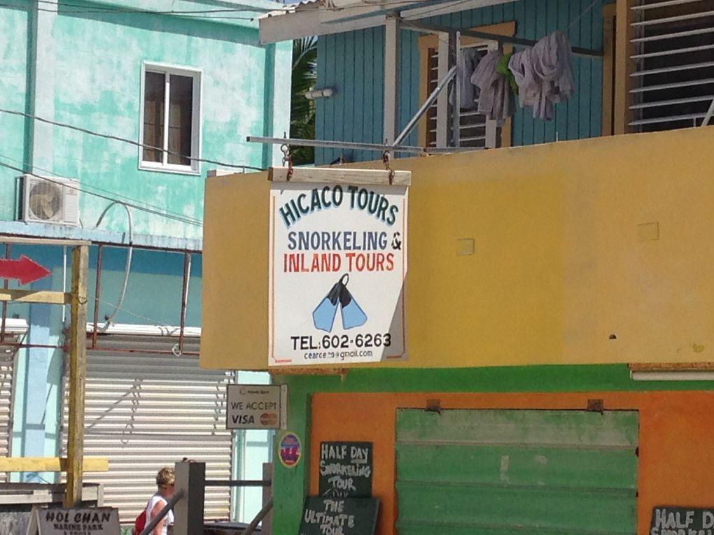 Hicaco Tours