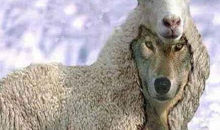 """LOBOS RAPACES - """"Pastores"""": Dios los espera!"""