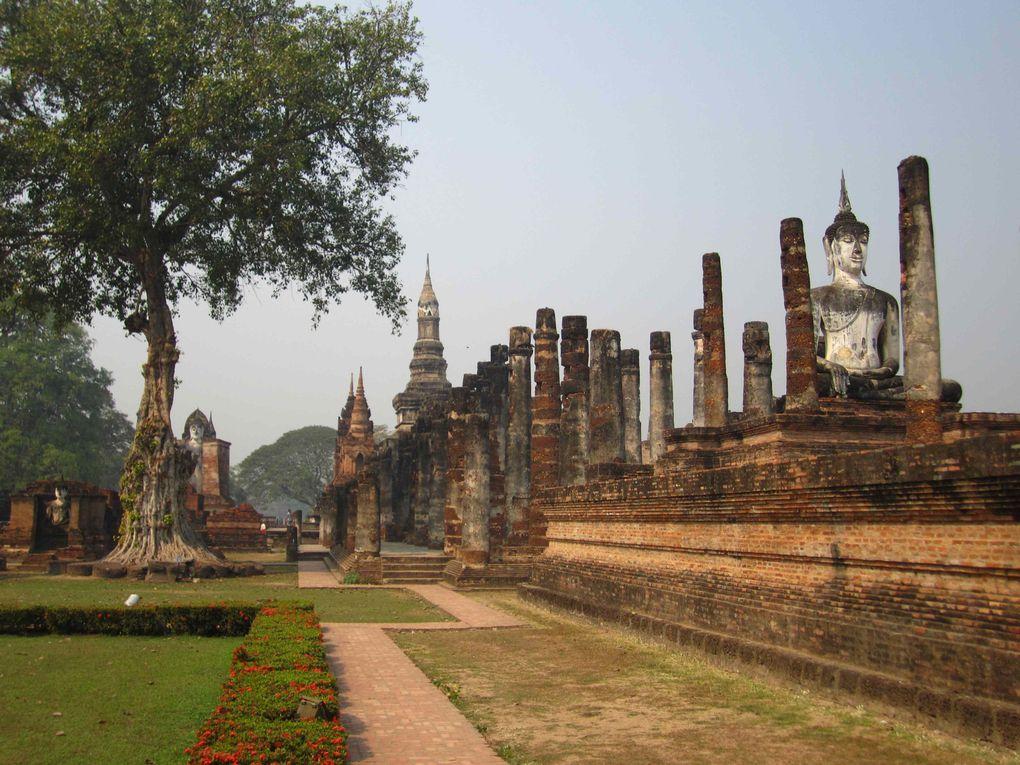Album - Thaïlande-1- 2014