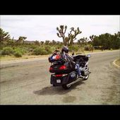 Goldwing unsersbande - Desert de Mojave the joshua tree