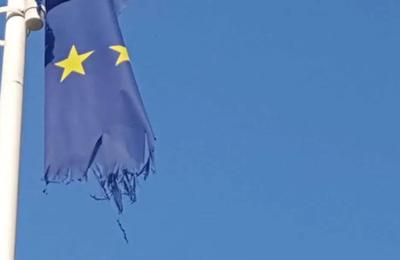 De la ferme à la fourchette: l'enquête de l'UE sur les pesticides – La contribution du Risk-monger