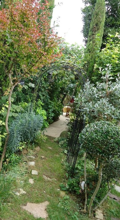 Mon jardin ce 21 octobre .....
