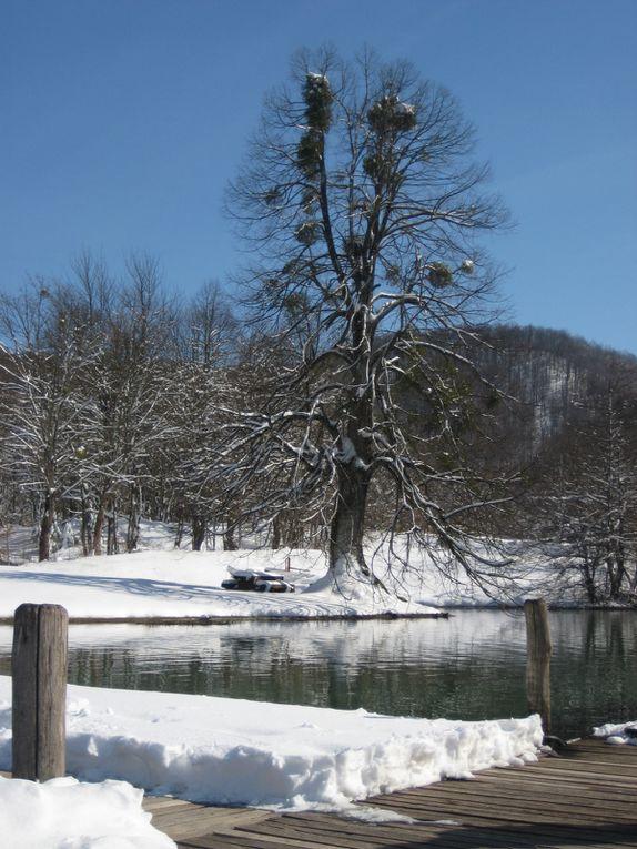 Album - Parc-Naturel-de-Plitvice