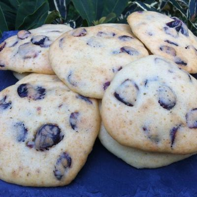 BISCUITS MOELLEUX AUX CRAMBERRIES