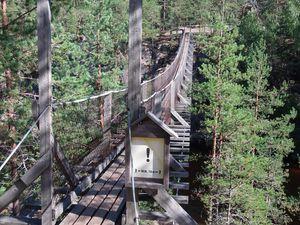 Parc National de Repovesi...Des ponts suspendus qui font Krouik Krouik Krouik, Krouik comme les remontées mécaniques des stations de ski